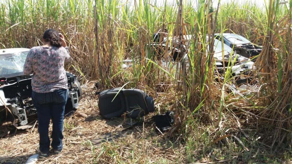 Polícia - GPA encontra 9 carros em canavial