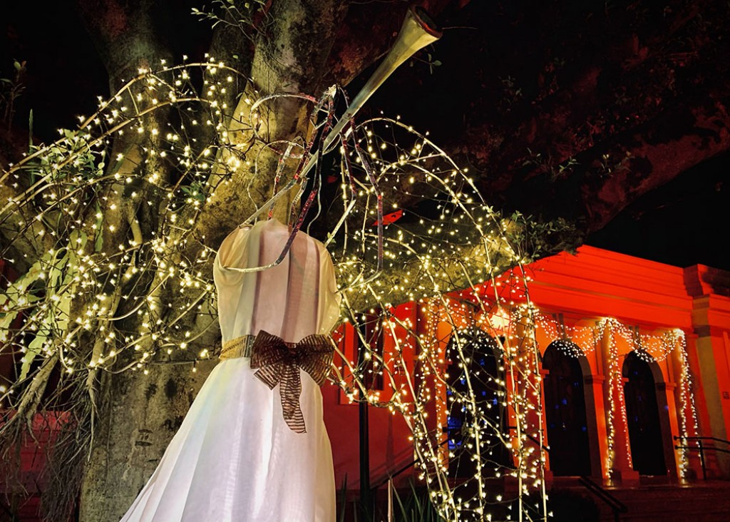 Cidades - Santa Bárbara lança o Natal das Árvores 2021