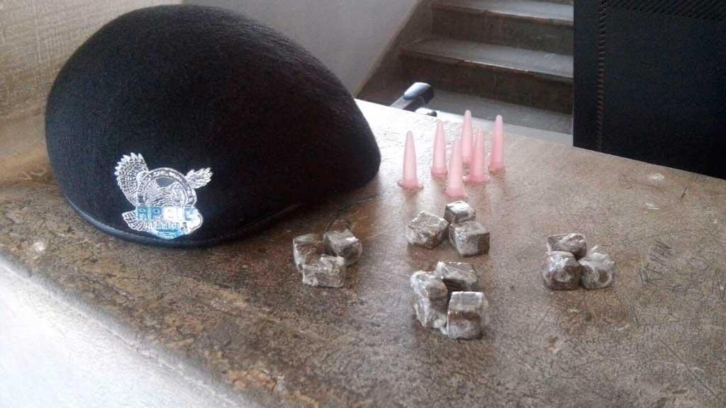 Polícia - Com ajuda de cão, guardas encontram drogas no Romano